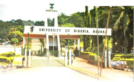 unn msc school fees